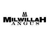 Milwillah Angus